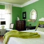Озеленение интерьера. На что способен «зеленый»!