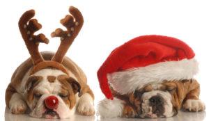 новогодний декор на 2018 год собаки