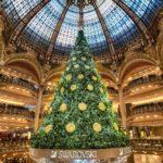 ТОП-10 самых красивых новогодних елок мира
