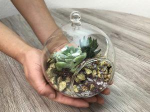 флорариум своими руками