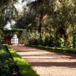 Прелести марокканских садов