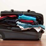 5 вещей, которые обязательно нужно сделать после поездки, чтобы защитить дом от клопов