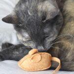 Делаем мягкую игрушку в виде мышки. Это просто!