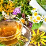 Цветы на даче, которые полезны для здоровья и просты в выращивании