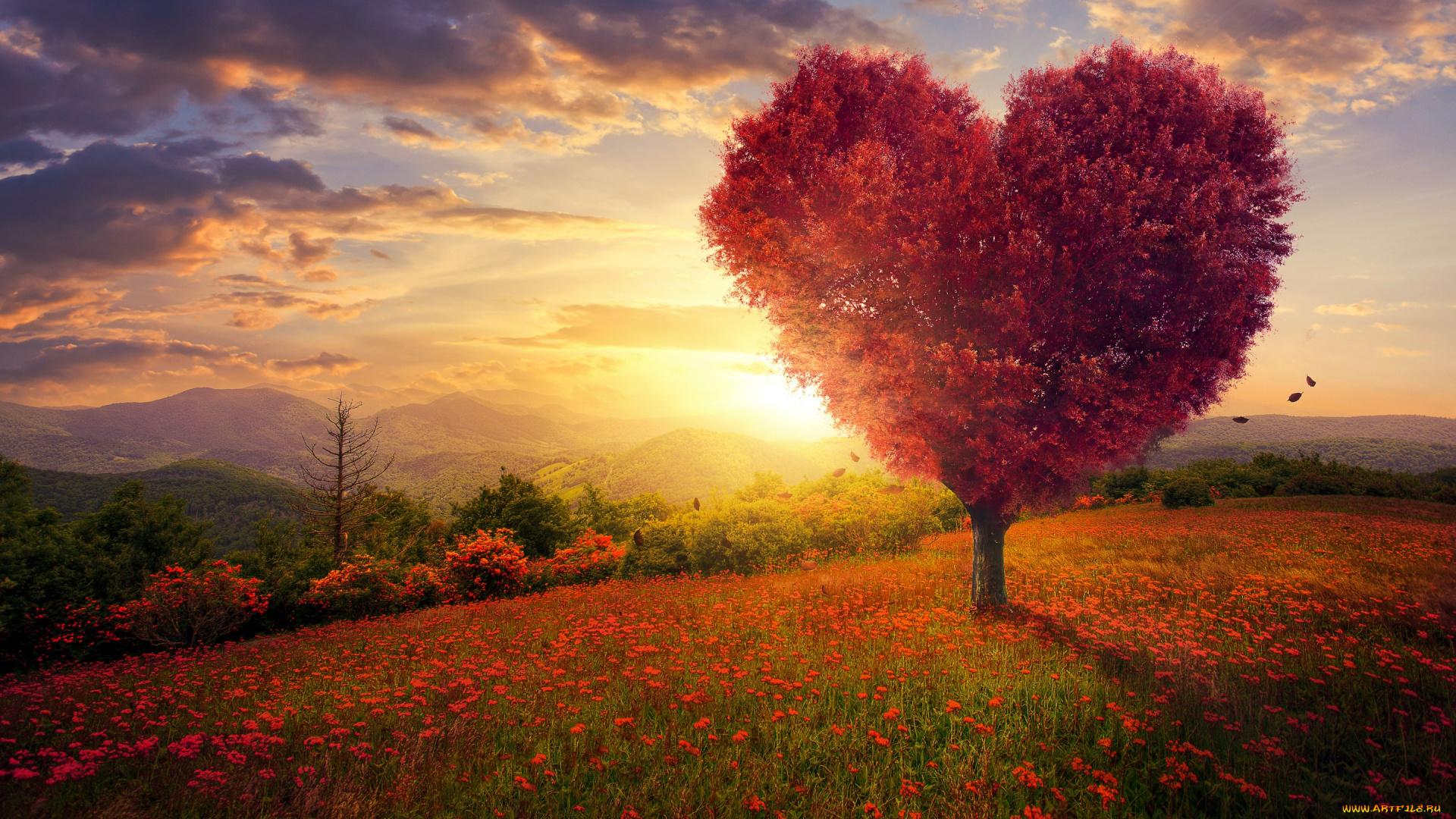 картинки дерево это счастье проекты двухэтажных