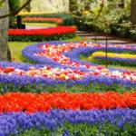 Идеи для вдохновения садоводам: 10 самых красивых садов и парков мира
