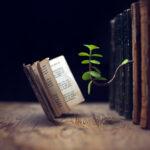 Любителям почитать: не мните страницы — делайте красивые закладки своими руками!