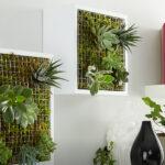Настенное панно из живых растений: вертикальный мини сад своими руками