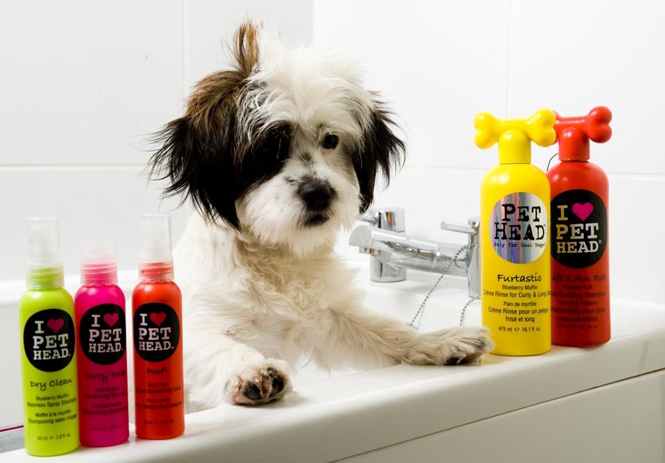 Косметика для собак к9 купить в москве avon naturals kids