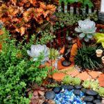 Если у вас нет дачи: идеи домашнего миниатюрного садоводства