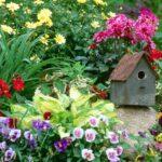 Как исправить некрасивый цветник: 7 безотказных приемов