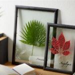 Сохраните память о лете: гербарий вместо картинной галереи