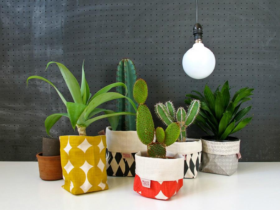 комнатные растения в декоре
