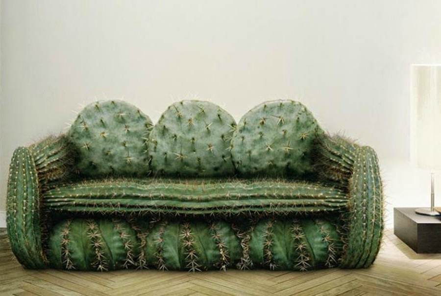 диван кактус
