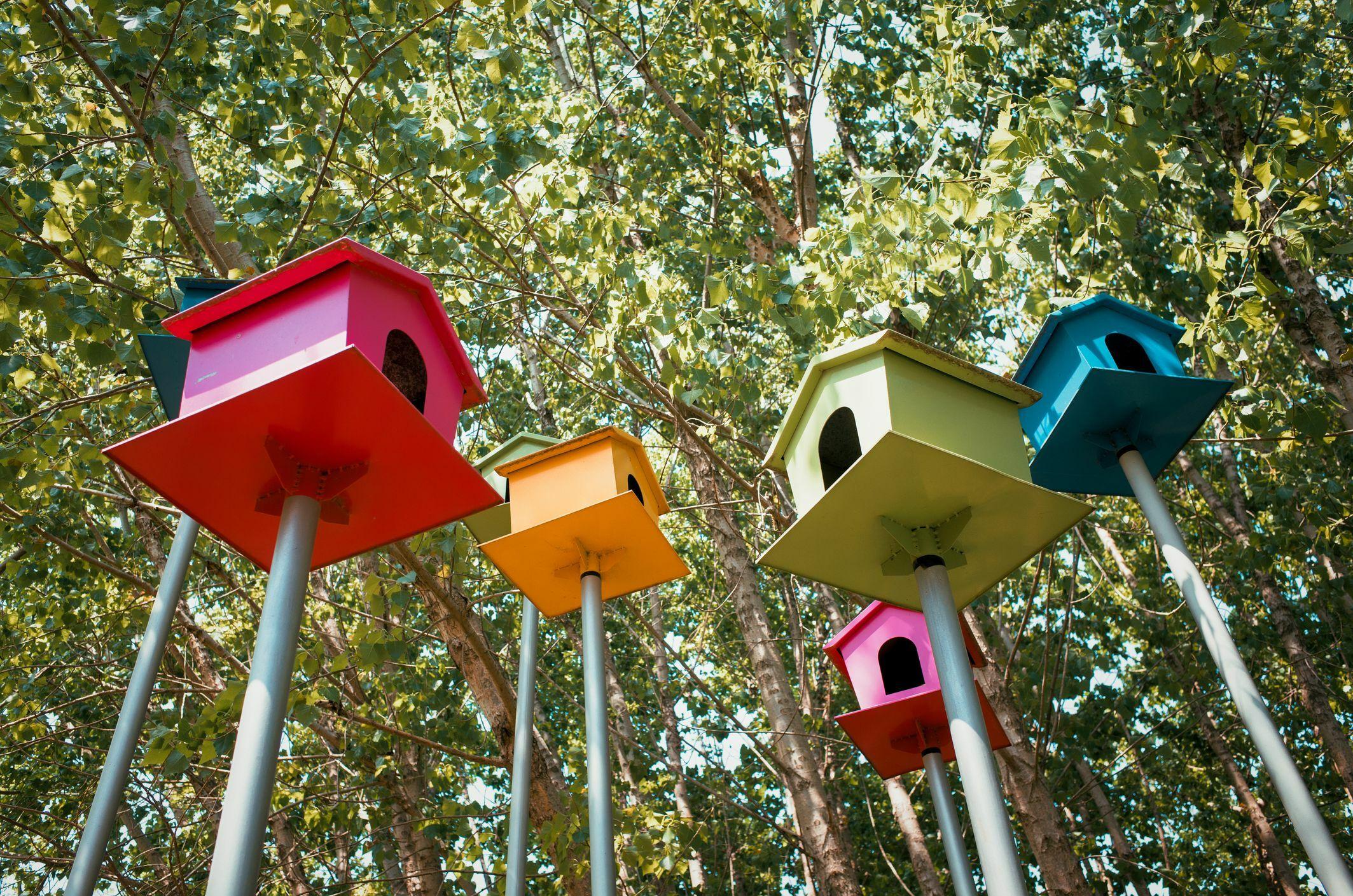 Разноцветные домики для птиц