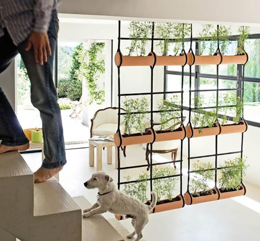 перегородка для зонирования комнаты из растений