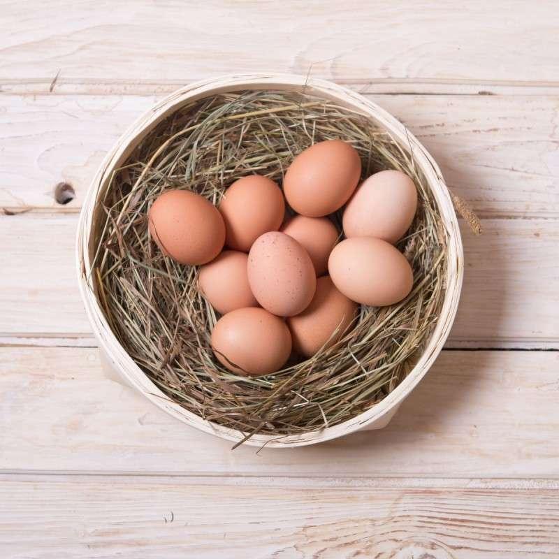 Яйца домашней утки