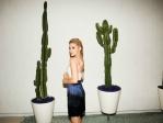Всегда в тренде: кактусы в интерьере