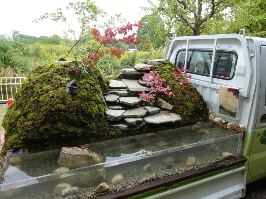 сад камней в грузовике