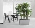 Роль кашпо в современном дизайне интерьера