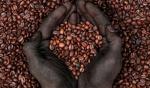 Почему кофе — культовый напиток нашего времени