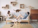 Куда спрятать кошачий туалет и прочие идеи декора для котовладельцев